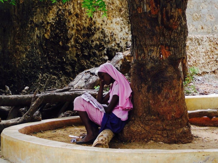 A standard 8 pupil at Shella Primary reading quietly under the shade of an avocado tree